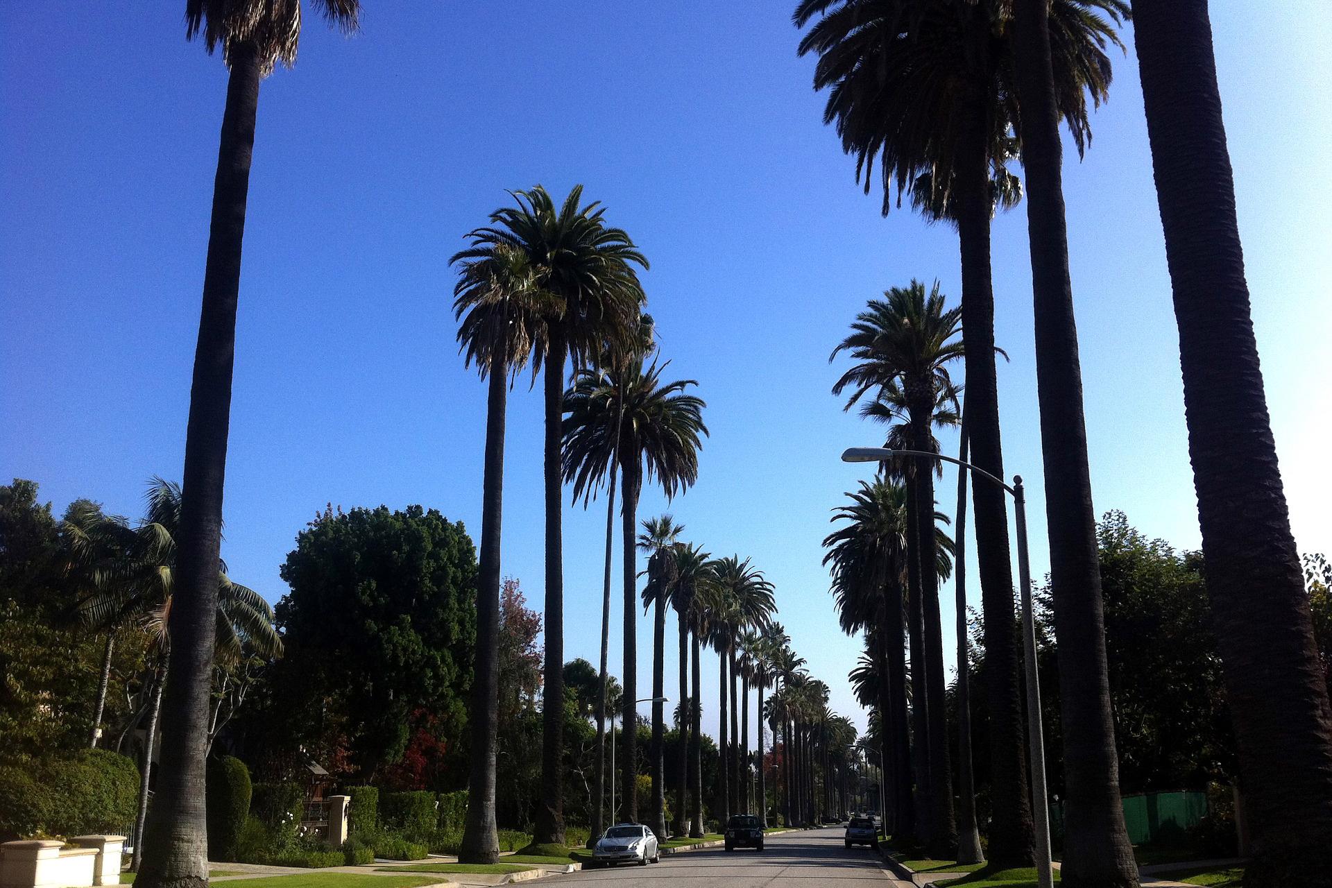 LA, USA